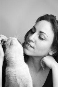 cat reward training