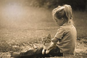 healthy relationship with pet parents
